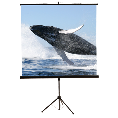 Mustang SC-T7011 Portable Tripod Projector Screen